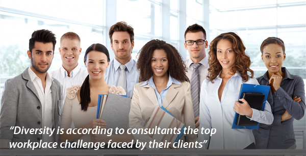 If diversity is important in permanent teams, is it also important in consultancy teams?